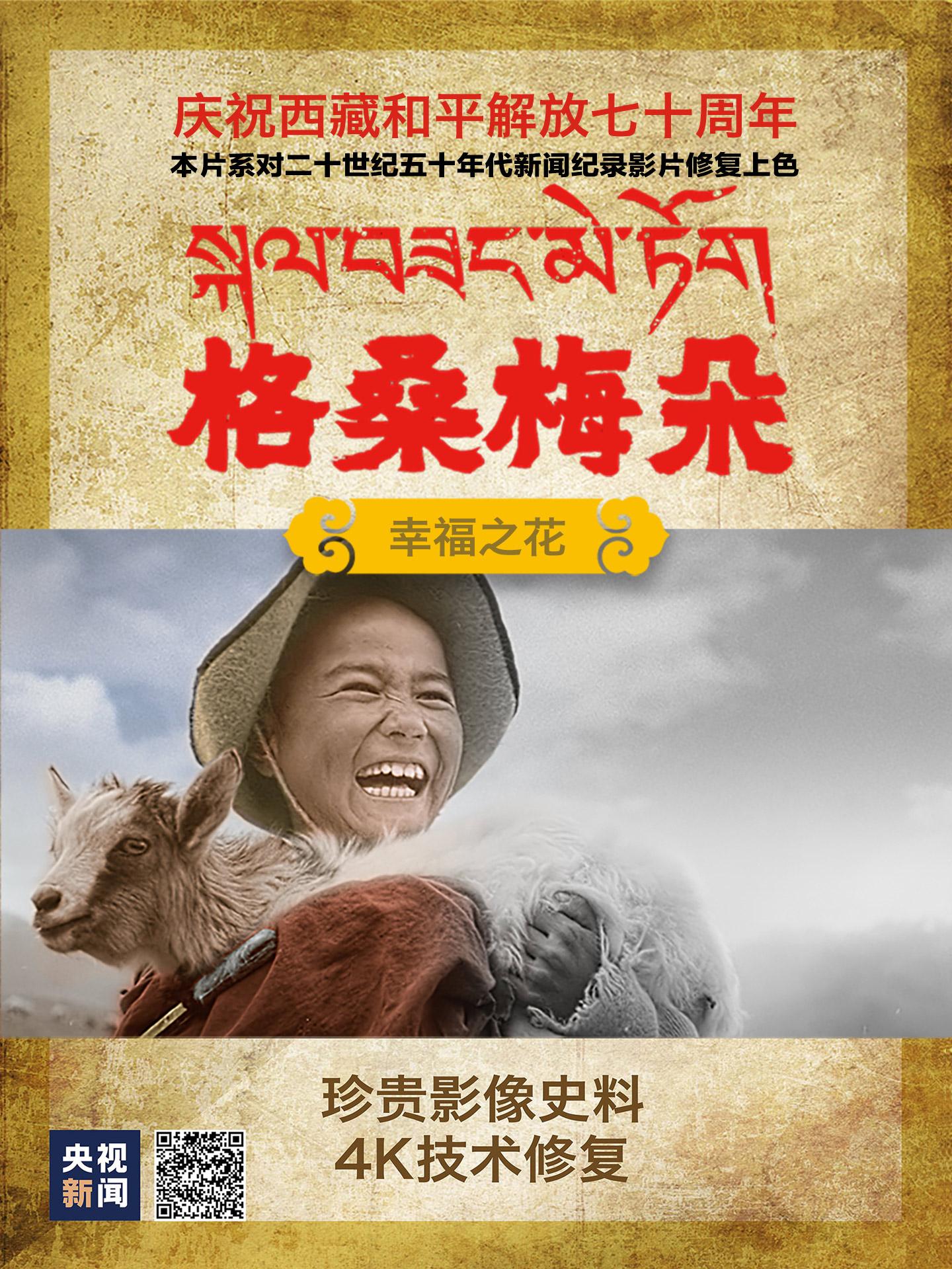 格桑花开!看4K+AI上色修复西藏百万农奴站起来