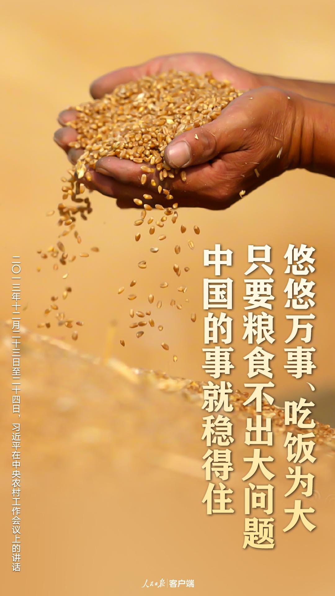 习近平:把中国人的饭碗牢牢端在自己手中