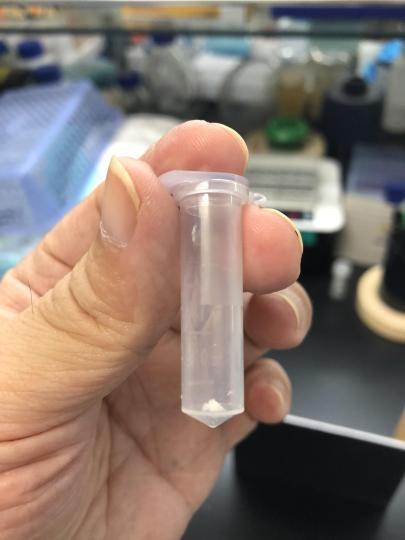 中外专家热评从二氧化碳人工合成淀粉:助解人类未来面临重大挑战